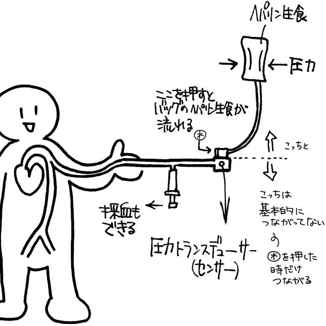 コロトコフ音が聞こえないときに、血圧を推測する方法 | 看護 ...