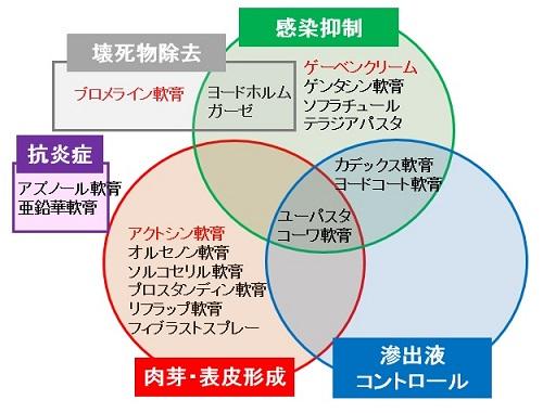 NP\_ikushima-fig1