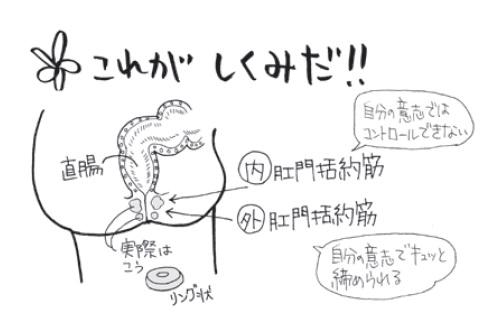 グリセリン浣腸の目的と手順【マンガでわかる!看護技術 ...